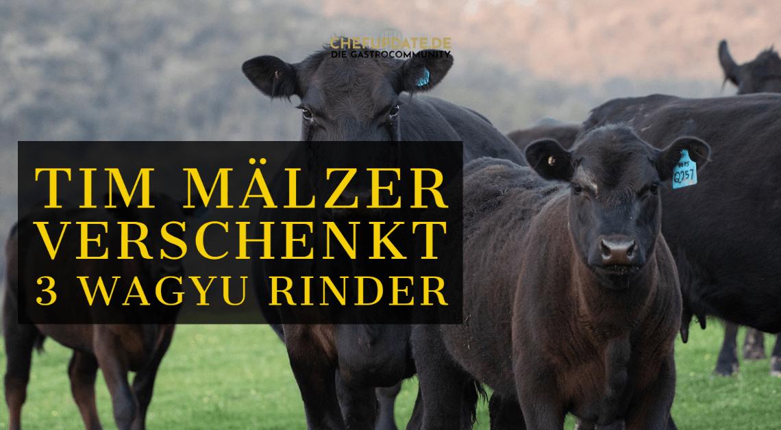 Tim Mälzer verschenkt 3 Wagyu Rinder